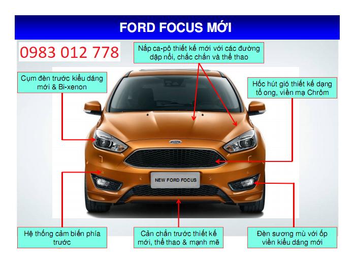 Focus 13