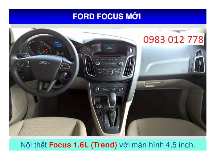 Focus 29