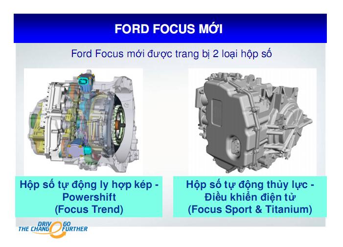 Focus 86