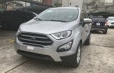 hinh-anh-ford-ecosport-trend-2021-2022-moi-mau-bac-tai-fordthanglong-2
